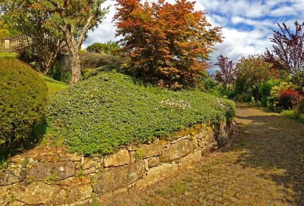 Jardin-camino-IMG_6409