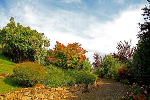 Jardin-camino-IMG_6437