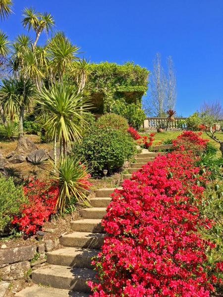 Jardin-escalera-IIMG_0535