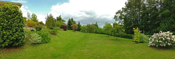 Jardin-general-IMG_6519