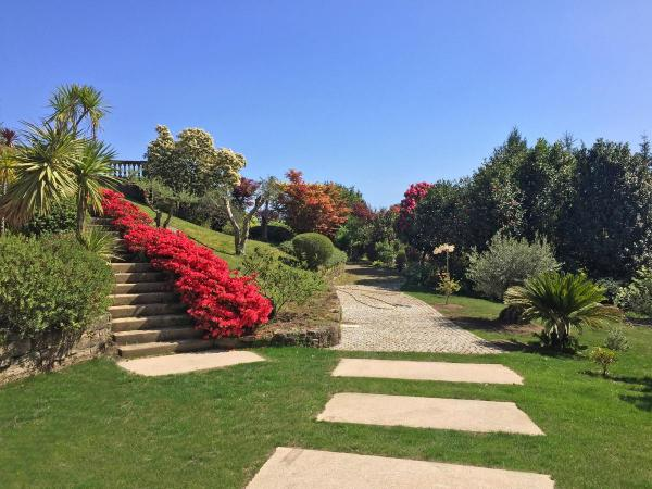 Jardin-trasera-IMG_0588